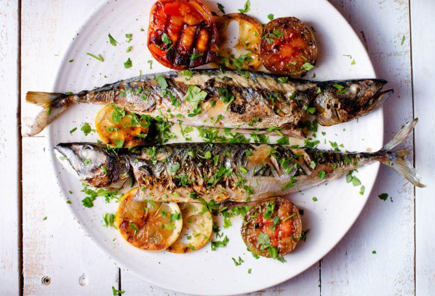 Maple and soy glazed mackerel; seafood